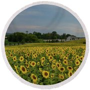 Sunflowers, People, And Pictures 2 Round Beach Towel