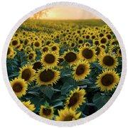 Sunflowers V Round Beach Towel