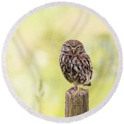 Sunken In Thoughts - Staring Little Owl Round Beach Towel by Roeselien Raimond