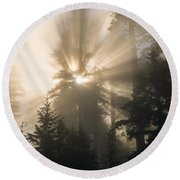 Sunlight And Fog Round Beach Towel