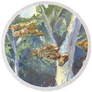 Sunlight And Sycamores Round Beach Towel