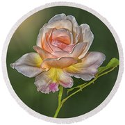 Sunlit Rose Round Beach Towel