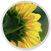 Sunlite Sunflower Round Beach Towel