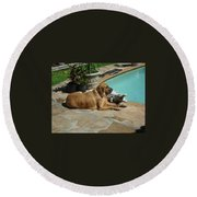 Sunning Round Beach Towel by Val Oconnor