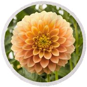 Round Beach Towel featuring the photograph Sunny Dahlia by Brian Eberly