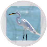 Round Beach Towel featuring the photograph Sunny Egret by Steven Sparks