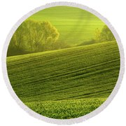 Round Beach Towel featuring the photograph Sunny Green by Jenny Rainbow