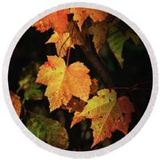 Sunny Leaves Round Beach Towel