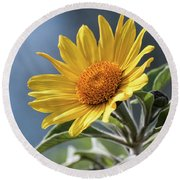 Round Beach Towel featuring the photograph Sunny Side Up  by Saija Lehtonen