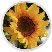 Round Beach Towel featuring the photograph Sunny Sunflower by Jordan Blackstone