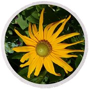 Round Beach Towel featuring the photograph Sunny Yellow Flower by Jasna Gopic