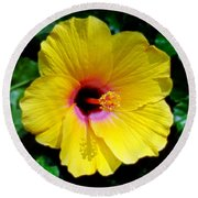 Sunny Yellow Hibiscus Round Beach Towel by Sue Melvin