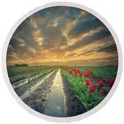 Round Beach Towel featuring the photograph Sunrise At Tulip Filed After A Storm by William Lee
