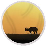 Sunrise Deer Round Beach Towel
