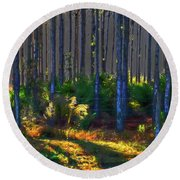 Sunrise On Tree Trunks Round Beach Towel