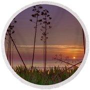 Sunrise Palm Blooms Round Beach Towel