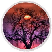 Sunrise Through The Foggy Tree Round Beach Towel