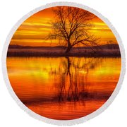 Round Beach Towel featuring the photograph Sunrise Tree by Fiskr Larsen
