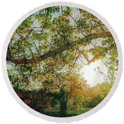 Round Beach Towel featuring the photograph Sunset  by Bee-Bee Deigner