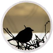 Sunset Bird Silhouette Round Beach Towel