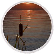 Sunset Cattail Round Beach Towel by Judy Johnson