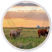 Sunset Cattle Round Beach Towel
