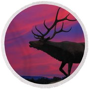 Sunset Elk Round Beach Towel by Randy Steele