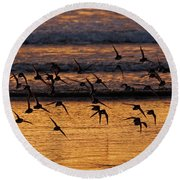 Sunset Flight Round Beach Towel