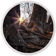 Sunset In The Woods Round Beach Towel