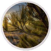 Sunset Pines Round Beach Towel