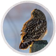 Sunset Short-eared Owl Round Beach Towel