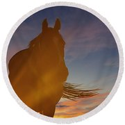Round Beach Towel featuring the photograph Sunset Silhouette by Carol Lynn Coronios