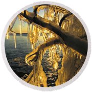 Round Beach Towel featuring the photograph Sunshine Is Fine by Greta Larson Photography