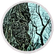 Round Beach Towel featuring the photograph Super Tree by Sandy Moulder