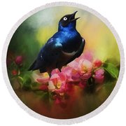 Superb Starling Round Beach Towel by Suzanne Handel