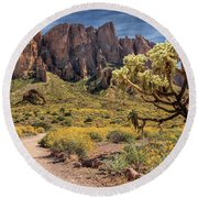 Superstition Mountain Cholla Round Beach Towel by James Eddy