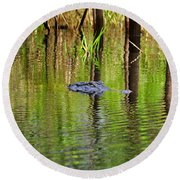Round Beach Towel featuring the photograph Swamp Stalker by Al Powell Photography USA