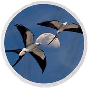 Round Beach Towel featuring the photograph Swallow Tail Kites In Flight Under Moon by Justin Kelefas
