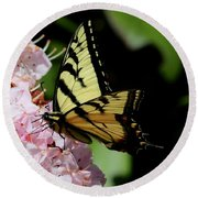 Swallow Tail On Mountain Laurel Round Beach Towel