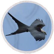 Swallow-tailed Kite #1 Round Beach Towel