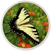 Swallowtail Among Lantana Round Beach Towel