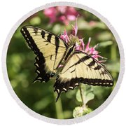 Swallowtail Butterfly 2016-1 Round Beach Towel by Thomas Young