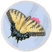 Swallowtail Butterfly And Zinnia- Transparent Backgroud Round Beach Towel