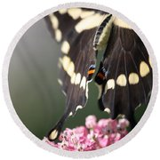 Swallowtail Departing Round Beach Towel by Mary-Lee Sanders