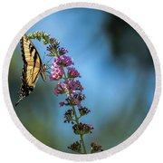 Round Beach Towel featuring the photograph Swallowtail Lookout by Judy Wolinsky