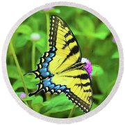 Swallowtail On Thistle Round Beach Towel by Kathy Kelly