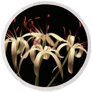 Swamp Lily Round Beach Towel