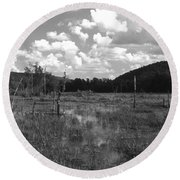 Round Beach Towel featuring the photograph Swampoem by Curtis J Neeley Jr