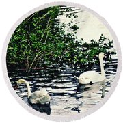 Round Beach Towel featuring the photograph Swan Family On The Rhine 2 by Sarah Loft