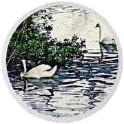 Round Beach Towel featuring the photograph Swan Family On The Rhine 3 by Sarah Loft